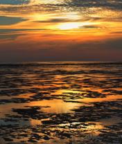 RASCHU Winterstimmung im Wattenmeer